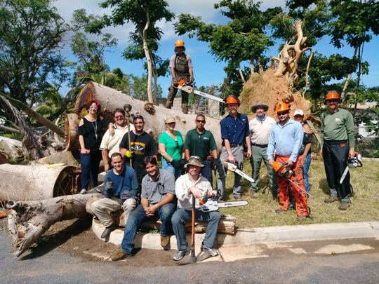 Staff members of the Luis Muñoz Marín Foundation, Arboretum Doña Inés Park, Naples Botanical Garden, Vizcaya Museum and Gardens, U.S. Forest Service and others work in the Arboretum Doña Inés Park in San Juan, Puerto Rico, once supplies arrived on Jan. 18, 2018.