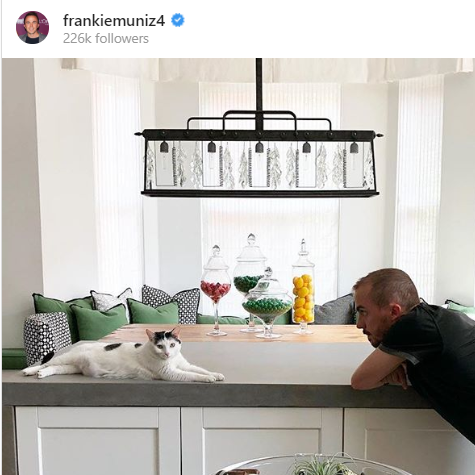 Frankie Muniz's week: A naughty kitten, a flooded Phoenix brownstone and a proposal