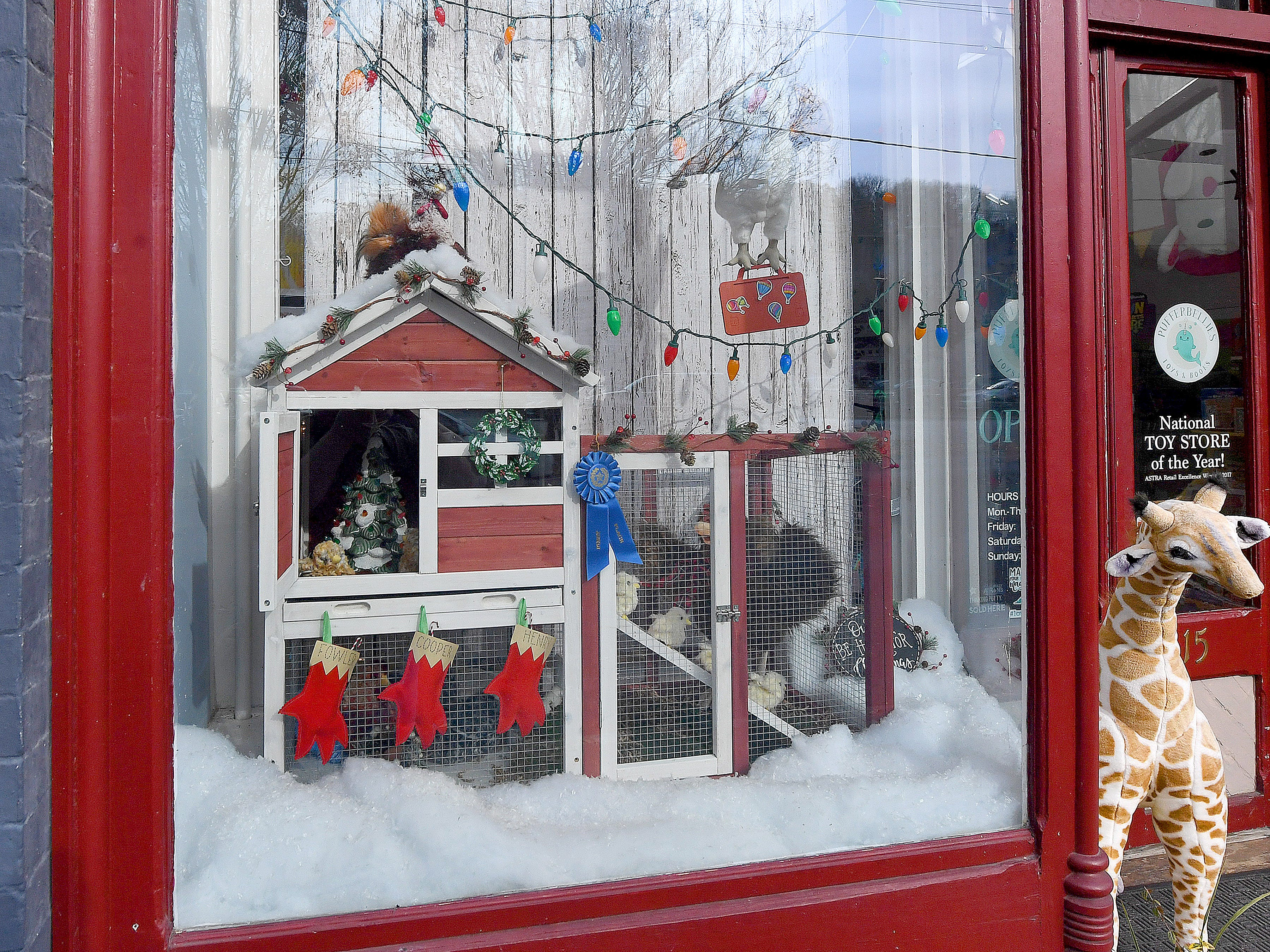 Pufferbellies' holiday window display placed first in Staunton Downtown Development Association's holiday storefront window display judging contest.