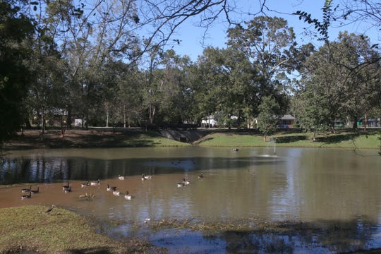 Linear Park is going to be a part of this retention pond. The plan is to expand the park across the street, Friday, Nov. 16, 2018.