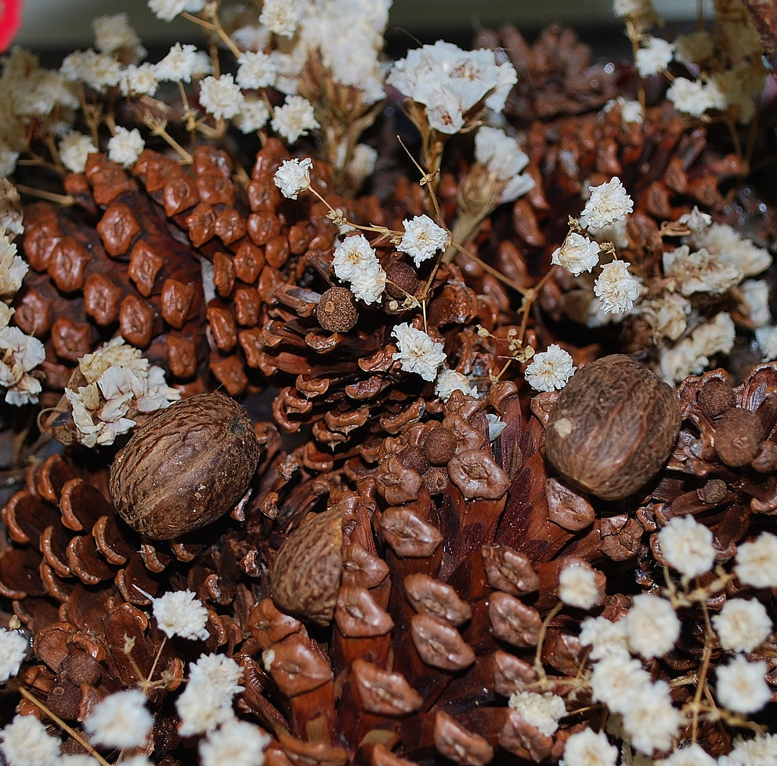 Use spices and pine cones to make homemade holiday gifts