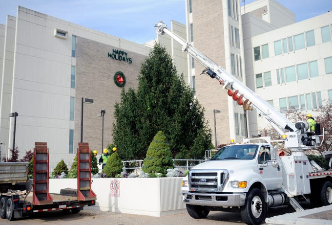 Vineland Department of Public Works employees carefully coordinate getting the base of the city's annual Christmas tree placed into its stand on Monday, November 19, 2018.