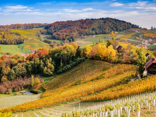 Beautiful view over the Styrian grape wine hills.