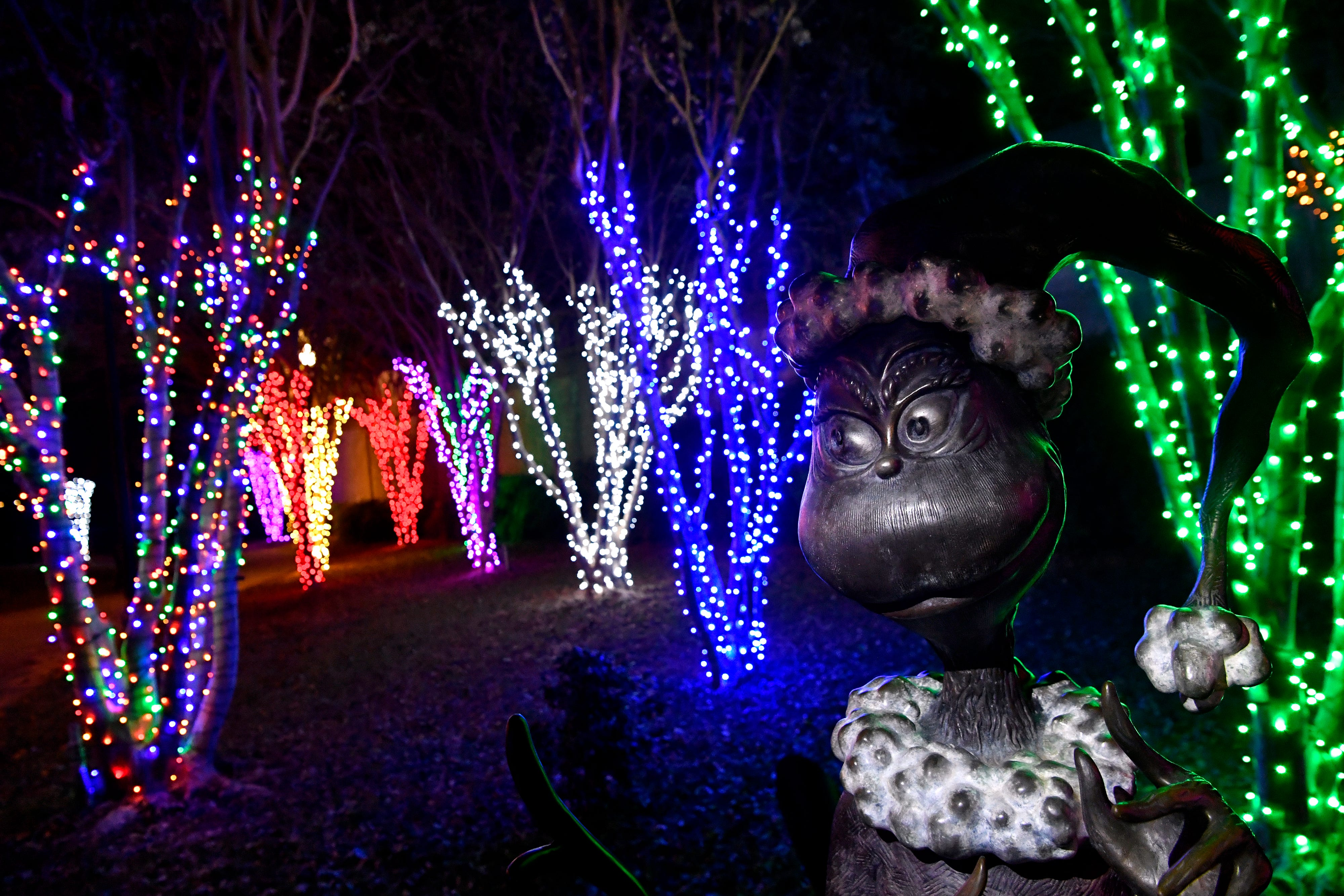 A statue of the Grinch in Everman Park is lit by flashlight and surrounded by Christmas lights Monday.