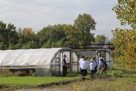 Special needs students at Rising Stars Academy in Center Line learn farming and gardening practices in addition to cooking and other life skills.