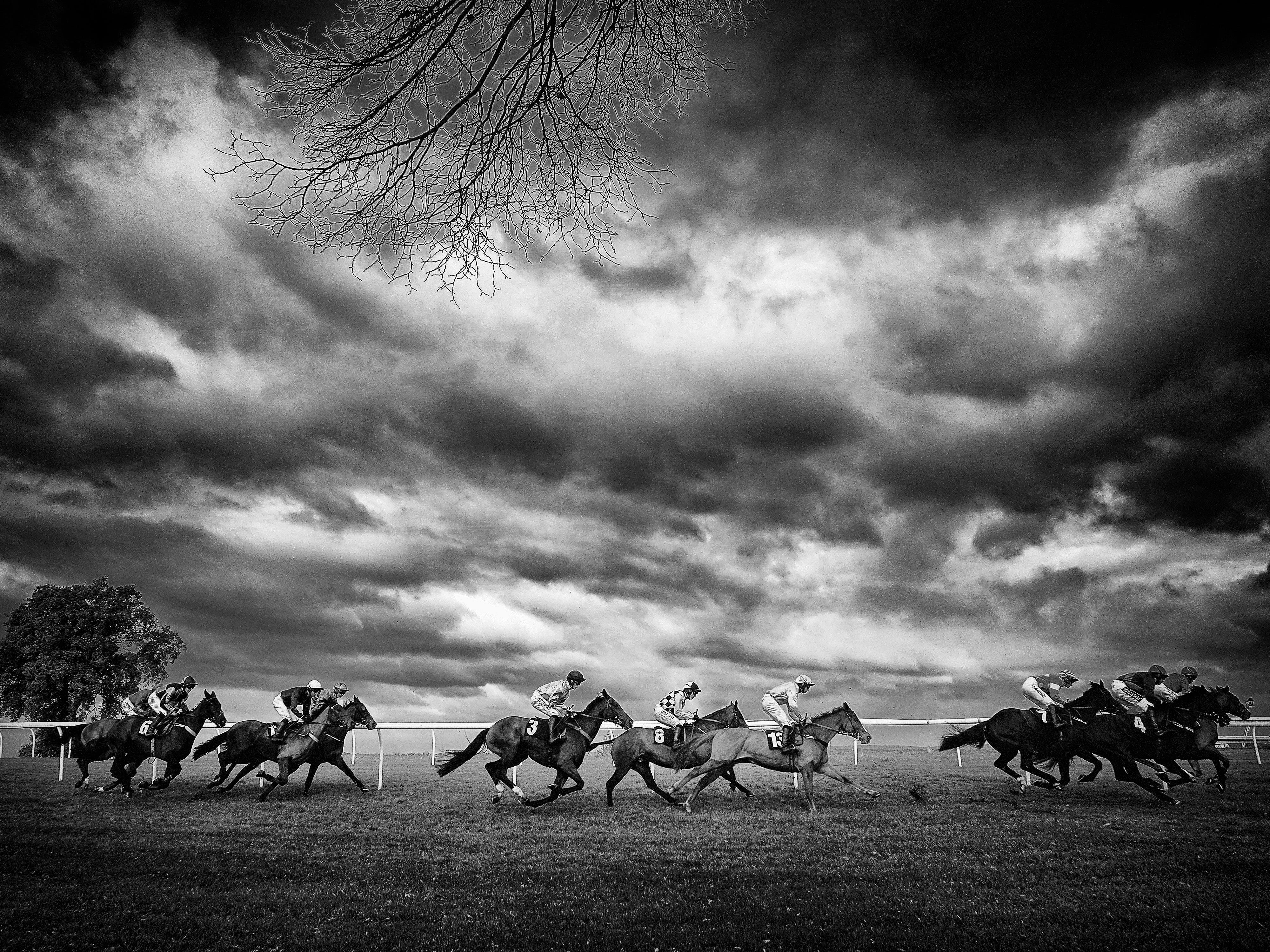 Harry Cobden riding Getaway Trump (center) on their way to winning The Strong Flavours Catering Novices' Hurdle at Plumpton Racecourse on November 19, 2018 in Plumpton, England.