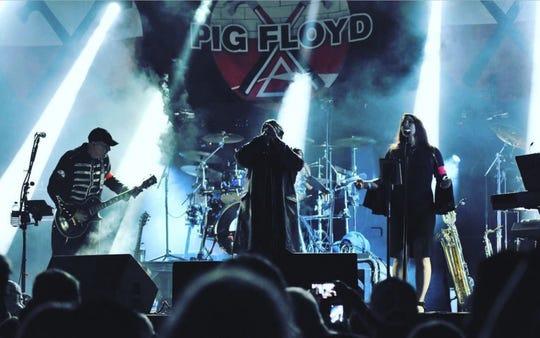 Pink Floyd tribute act Pig Floyd.