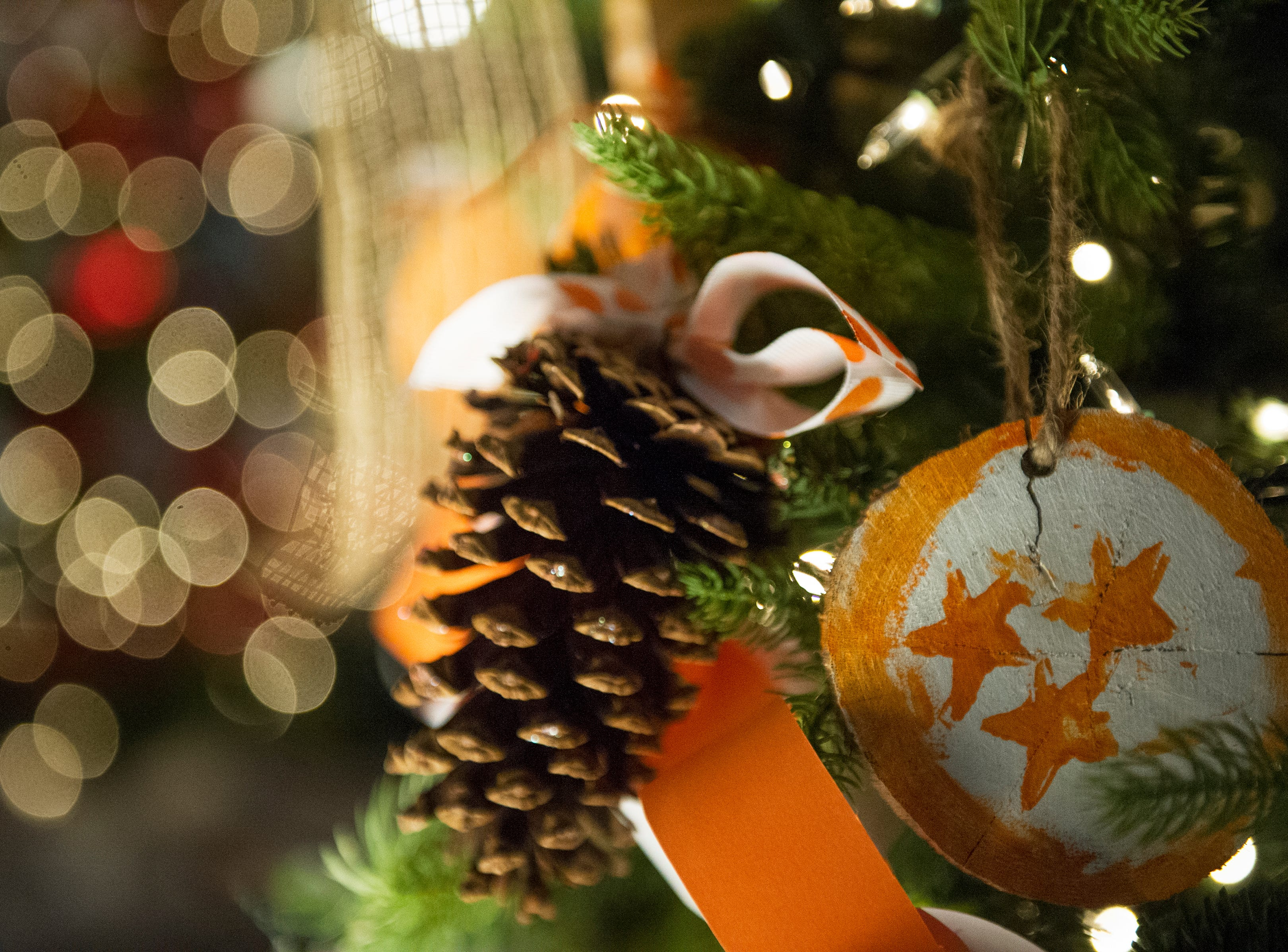A hand made Tennessee inspired ornament hangs during the Fantasy of Trees at the Knoxville Convention Center Wednesday, Nov. 25, 2015. (JESSICA TEZAK/NEWS SENTINEL)