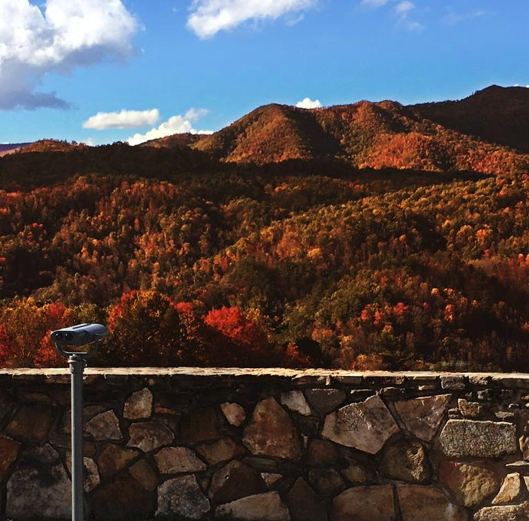 Watch: How Tennessee is helping the colorblind experience fall colors