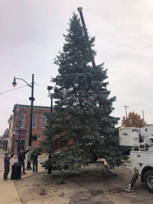Fowlerville Xmas Tree Photo 2018