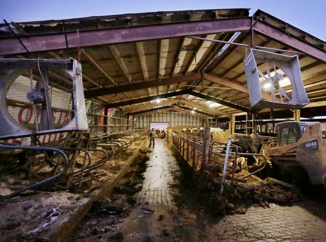 Wisconsin dairy farmers in financial crisis, more expected