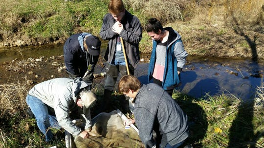 Mountain Home High School students collect invertebrates along the banks of Dodd Creek on Nov. 16.