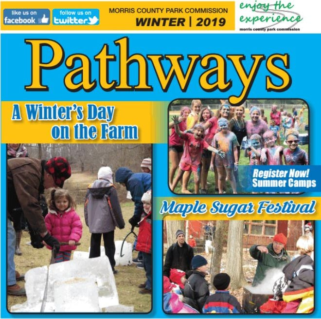 Cover of Winter 2019 Pathways