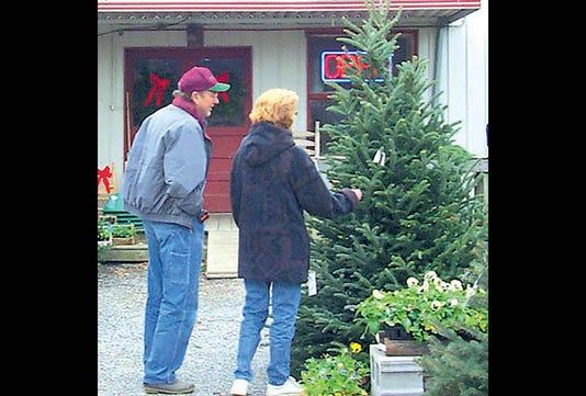 1120 9 Christmas Tree Shopping