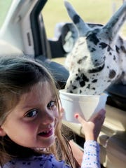 Maddie Miller loves feeding the animals at the Tennessee Safari Park, which is a drive-thru zoo.