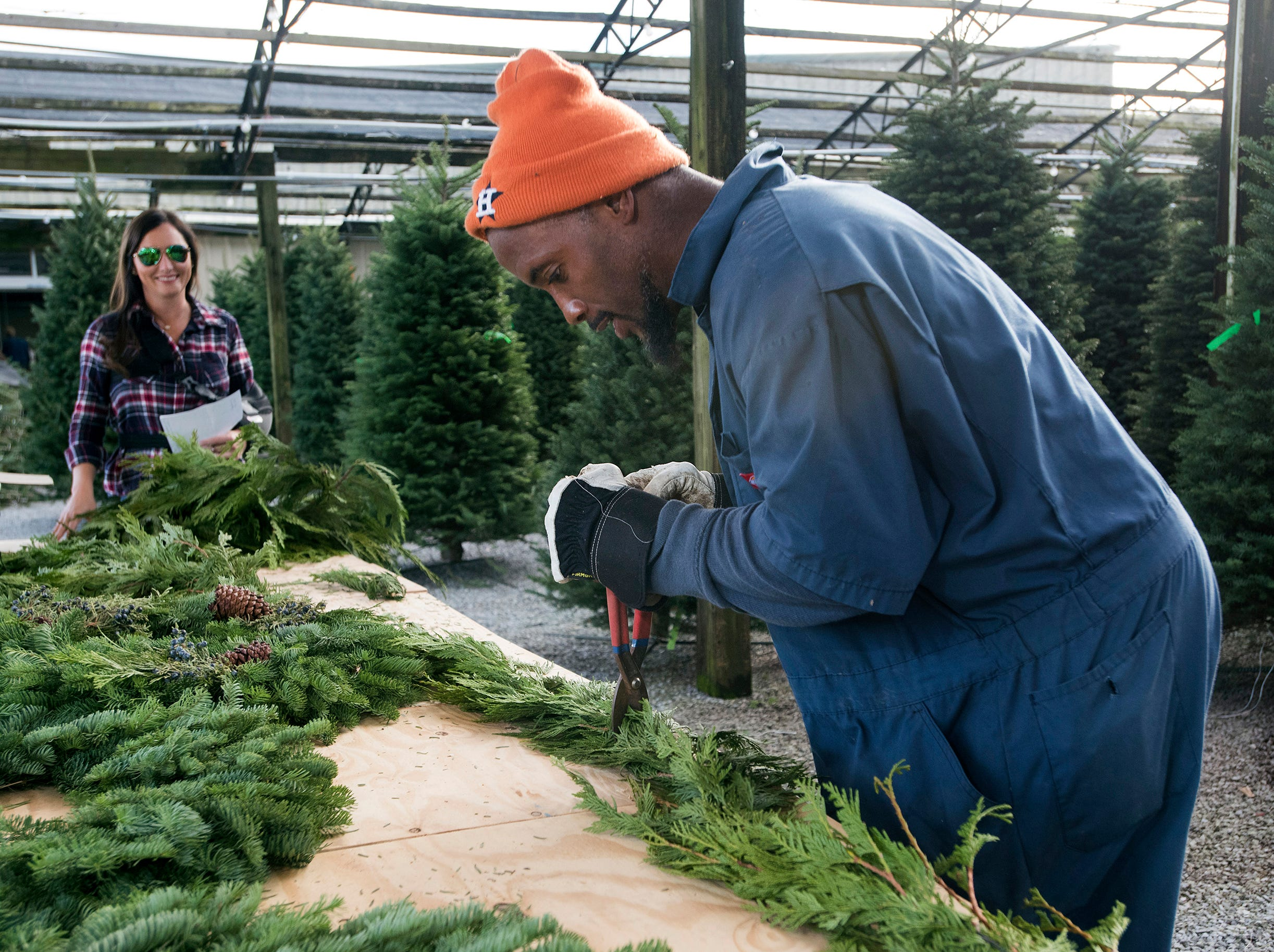 Christmas Trees begin to hit the local market