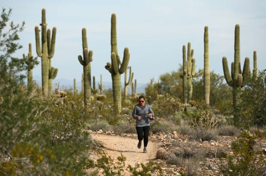 A runner hits the Maricopa Trail at the White Tank Mountain Regional Park on Nov. 20, 2018, in Waddell.