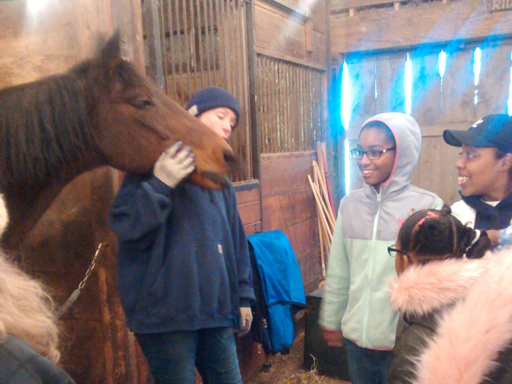 Youth Mission Outreach visitors get firsthand look at rescue horses