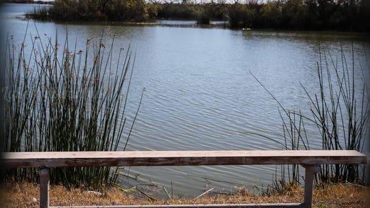 A bench at the Knickerbocker boat launch at Lake Nasworthy.