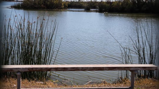 A bench at the Knickerbocker boat launch at Lake Nasworthy.