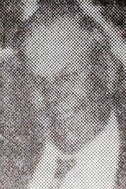 Edward Cizauskas