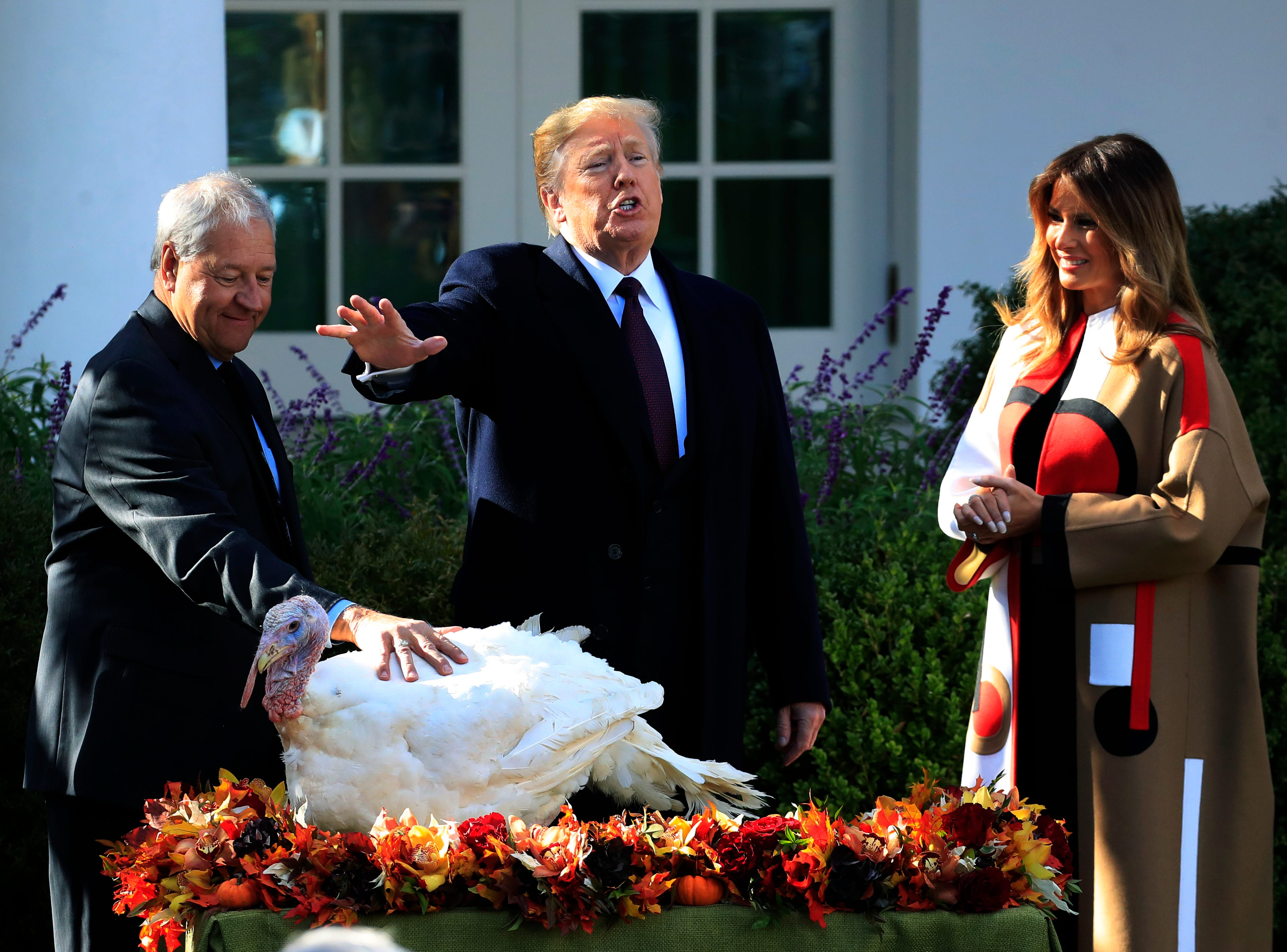 """President Donald Trump with first lady Melania Trump, right, gives """"Peas"""", on of the National Thanksgiving Turkeys, an absolute pardon during a ceremony in the Rose Garden of the White House, in Washington, Tuesday, Nov. 20, 2018. The pardoning ceremony marked the 71st year since it first took place in 1947. (AP Photo/Manuel Balce Ceneta)"""