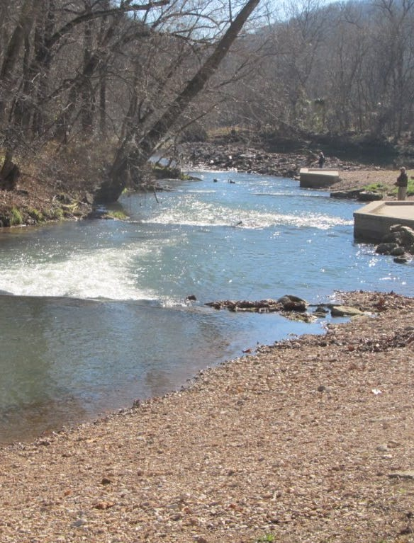 A lone angler winter trout fishing at Roaring River.