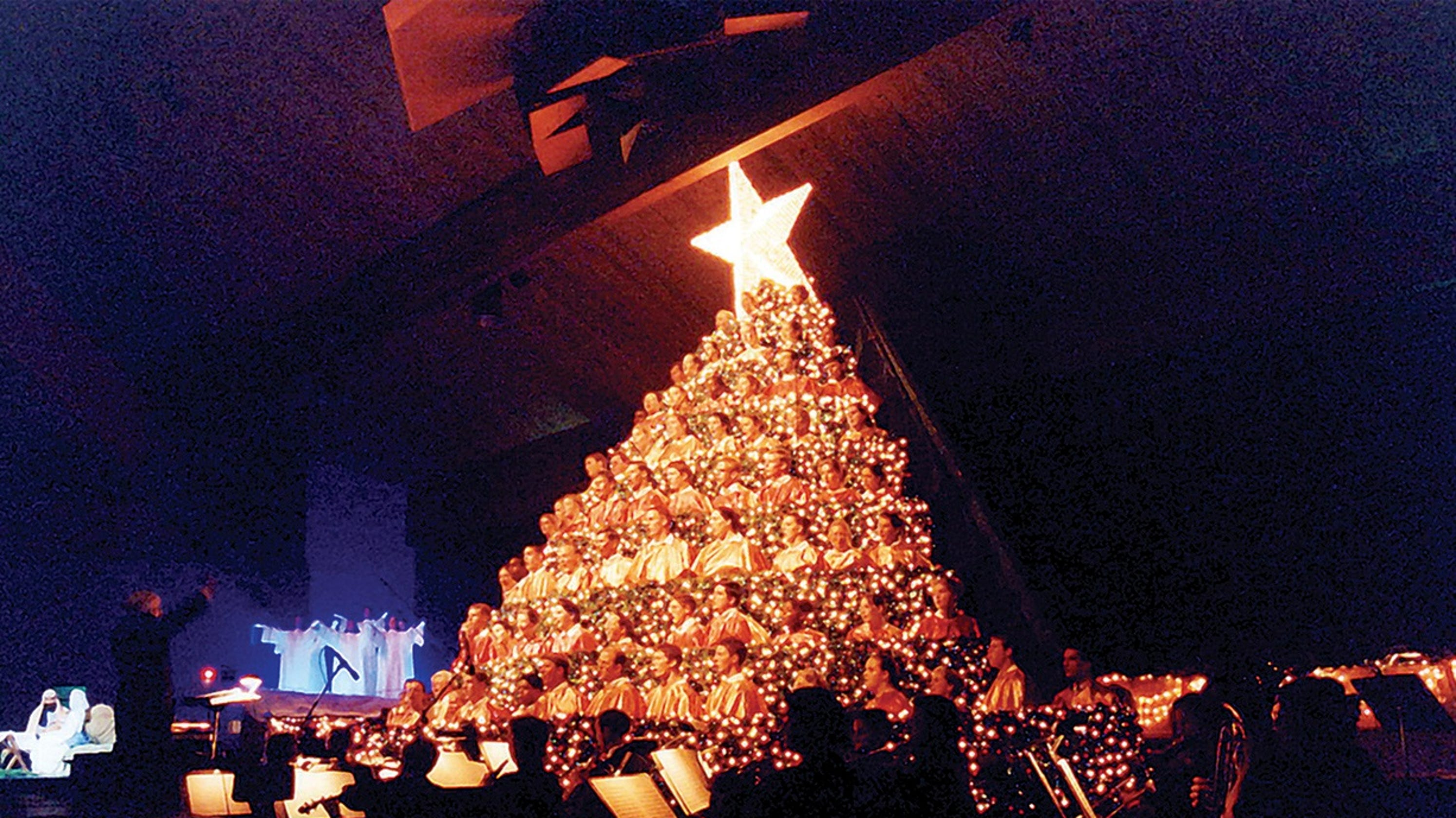 Singing Christmas Tree.Do You Hear What I Hear Hobe Sound Singing Christmas Tree A