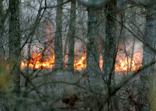 Forest Fire 050907