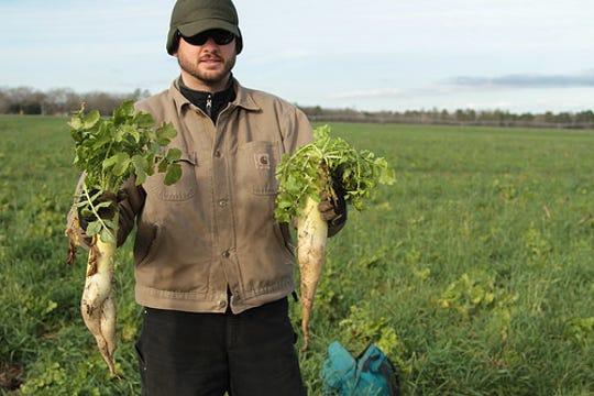 Daikon radish – commonly called tillage radish – can break up plow pans while adding organic matter.