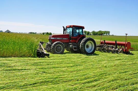 Think about how you'll terminate your cover and plant your cash crop next spring. Using a roller crimper with a no-till drill is just one option.