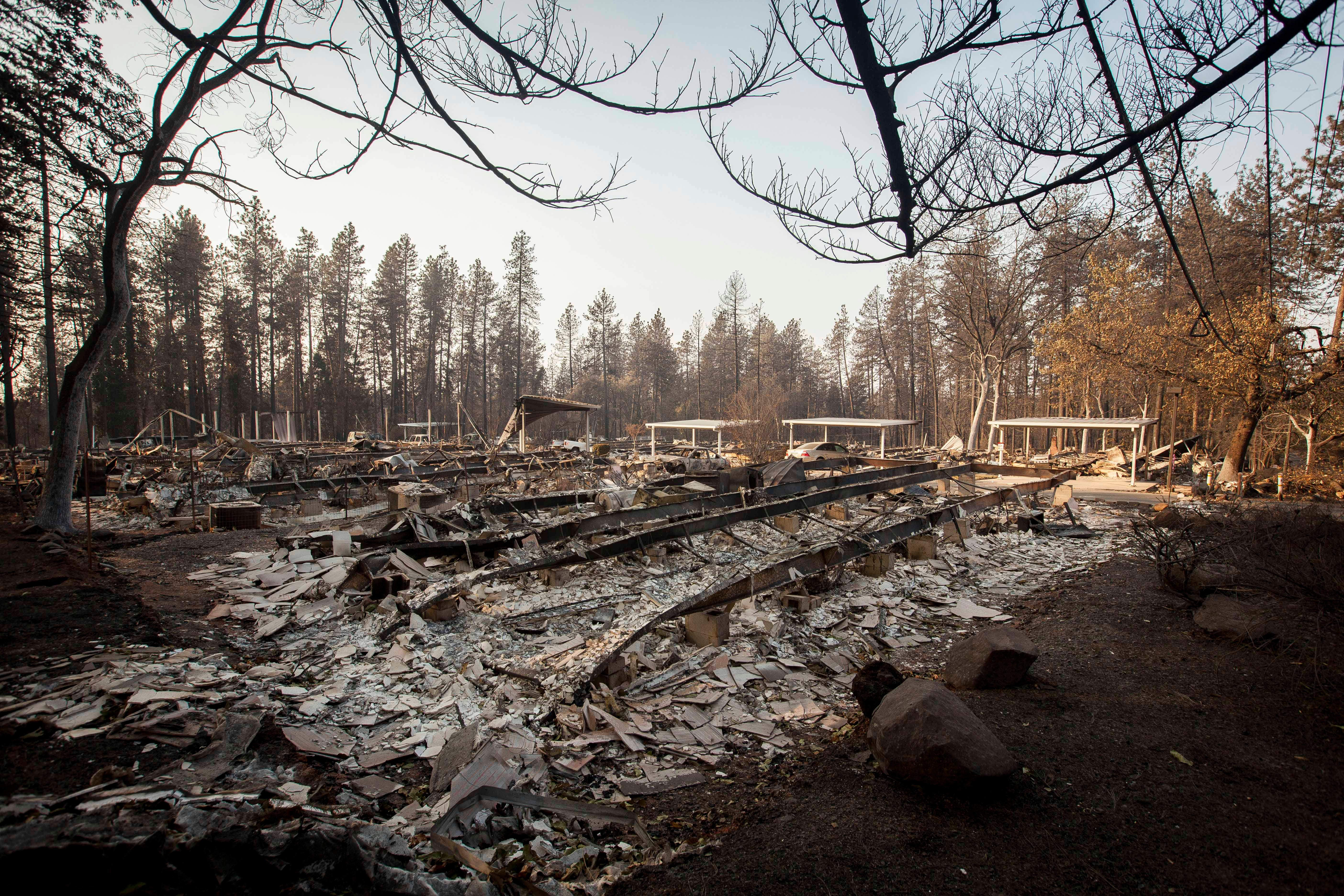 Class-action lawsuit alleges deadly California wildfire was caused by Pacific Gas & Electric
