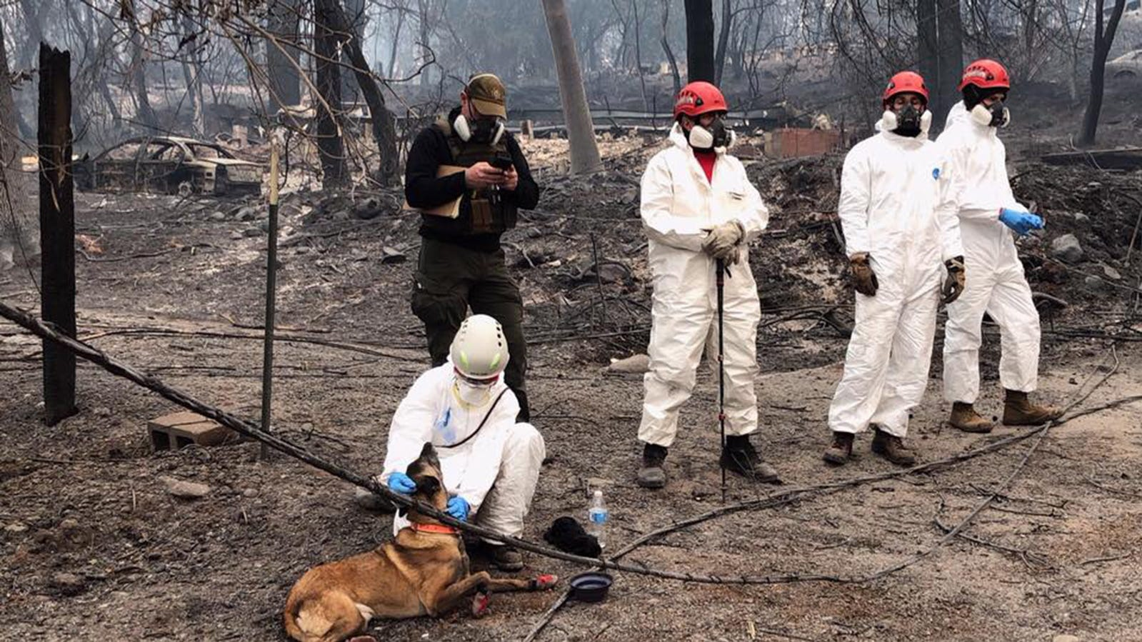A handout photo made available by the Butte County Sheriff and Coroner's Department shows a team of rescue workers preparing to search for the remains of victims missing in the Camp Fire in Butte County, California, on Nov. 16, 2018.