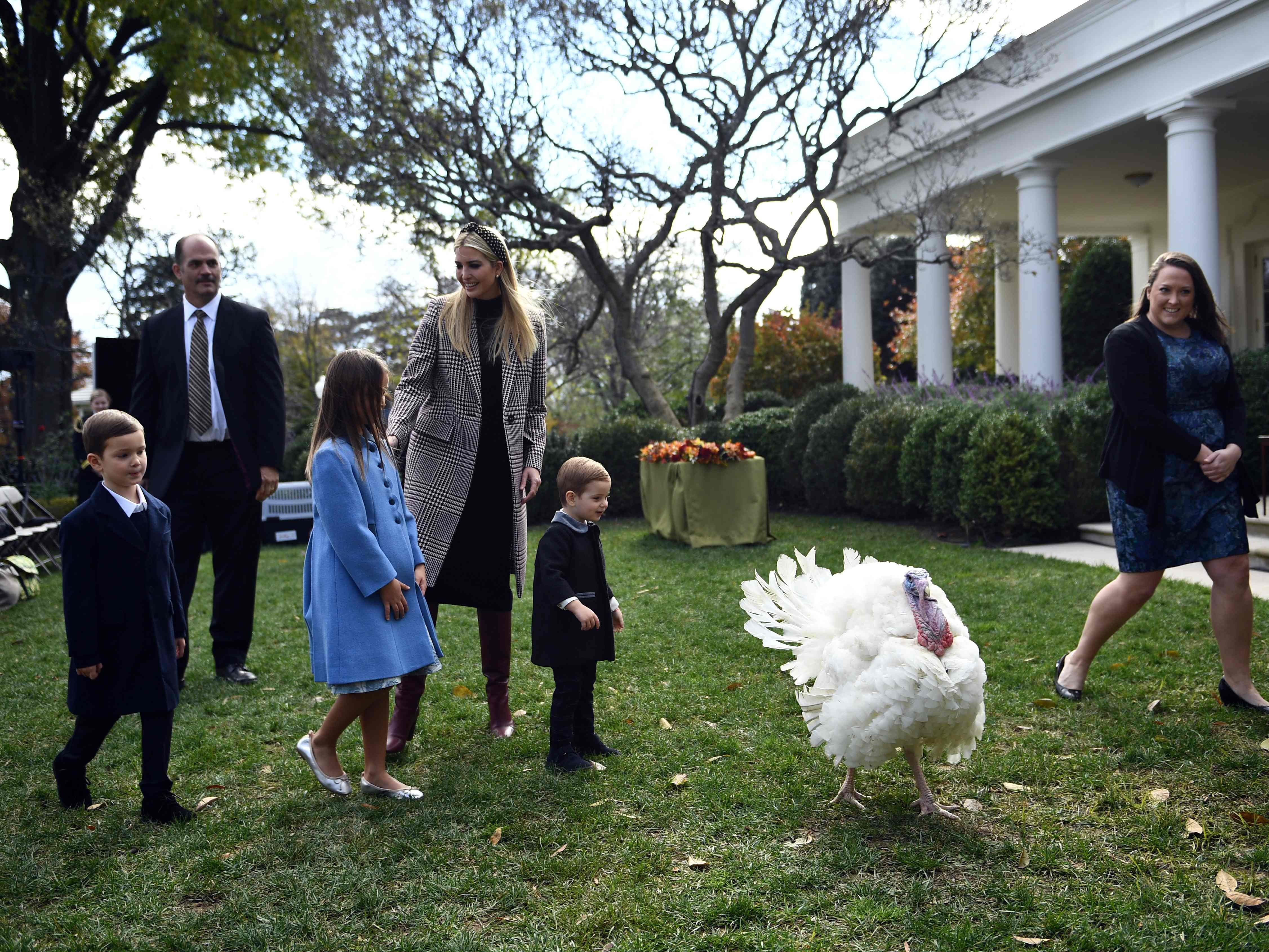 Ivanka Trump watches as her children chase after a turkey which is to be pardoned by President Trump during an annual ceremony at the White House in Washington, Nov. 20, 2018.