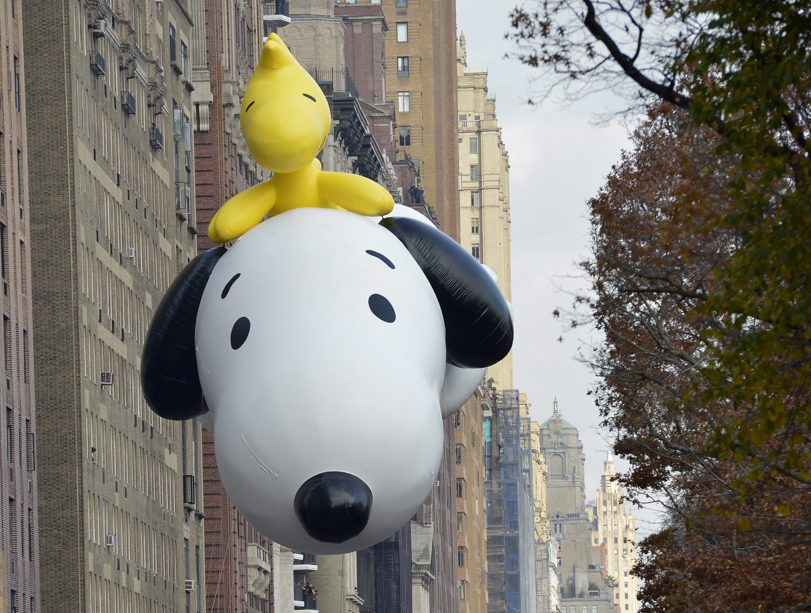 epa05043395 The Snoopy and Woodstock balloon floats down Central Park West during the 89th Macy's Thanksgiving Day Parade in New York, USA, 26 November 2015.  The annual parade, which began in 1924, features giant balloons of characters from popular culture floating above the streets of Manhattan.  EPA/PORTER BINKS
