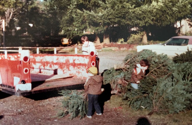 Josh Olmsted, who runs Olmsted Tree Farms, is wearing a yellow hat in this photo from the early years of the family's business on Perry Avenue. His brother Matt is in the brown jacket and his brother Sean is by the truck.