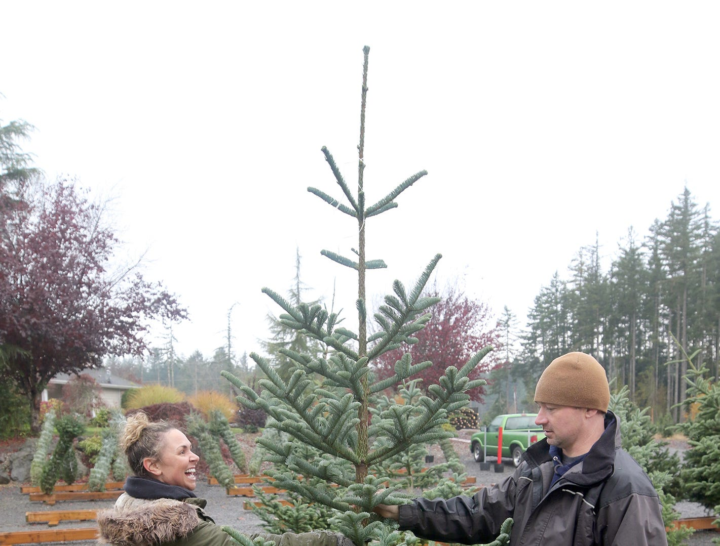 Josh Olmsted, right, helps customer Julia Lucas of Bremerton with the tree she choose on Wednesday, November, 21, 2018 at the tree farm in Poulsbo. The family has run a tree business for 50 years. Friday, November 23, is the opening day for the Poulsbo U-cut tree farm.