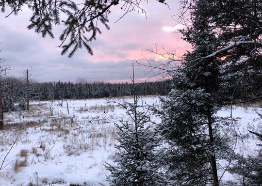 Dawn breaks Nov. 20 in Ashland County, marking the fourth day of Wisconsin's deer season.
