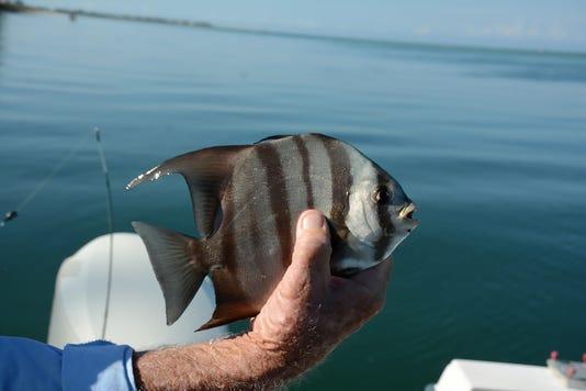 0902 Nwme Fishing 004
