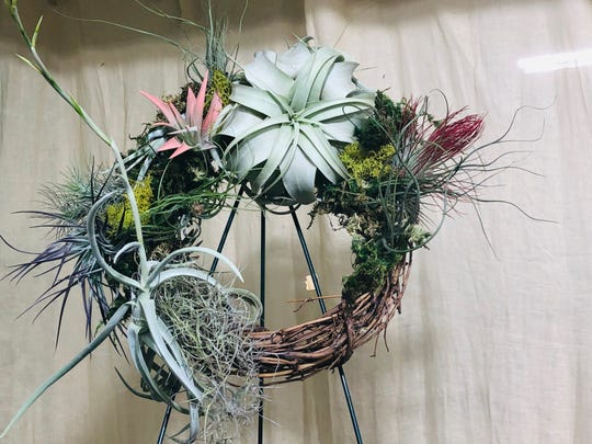 Pictured is a living wreath done by Joel Toledo, owner of the Golden Door Nursery. He's hosting a hands-on workshop Dec. 19 to teach the community how to make a wreath using air plants and moss.