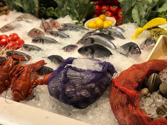 Elia has a gorgeous fish display