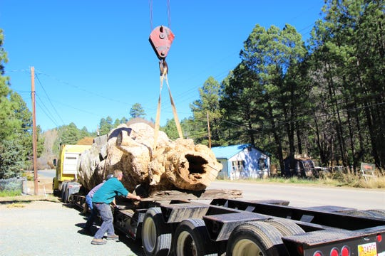 Mauritsen and Wonzy double check placement of the gigantic tree burls as the two pieces combined weight total is well over 35,000 pounds. The pieces were placed carefully on the tractor trailer and precision was critical with no room for error.