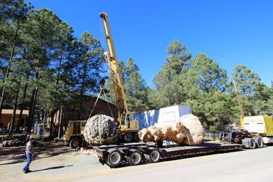 loading the specimens