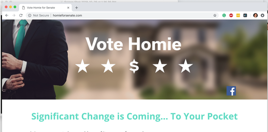 A screenshot of the Homie for Senate website.