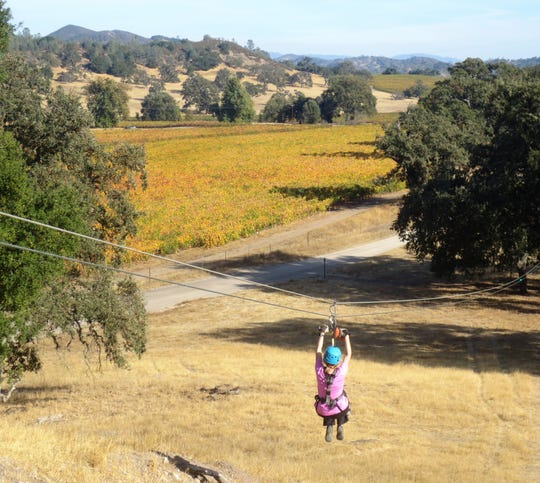 A zip-liner glides past a pinot noir vineyard in Santa Margarita, California.