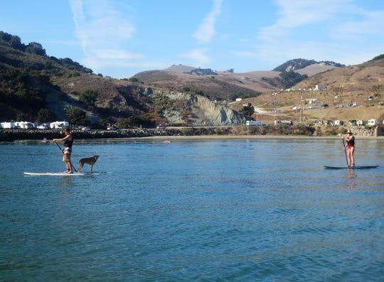 Paddleboarders near the San Luis Obispo pier.