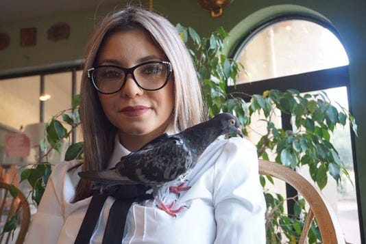 Bird And Owner