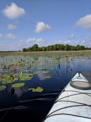 Learn about the Lake Jackson Aquatic Preserve at meetings beginning on Dec. 1.