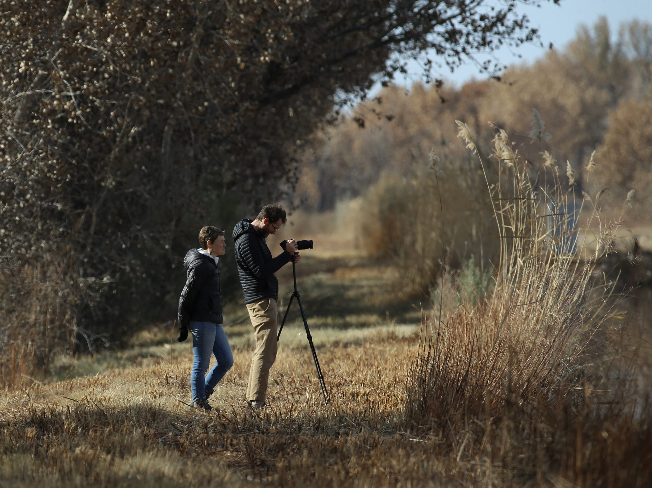 Bosque del Apache National Wildlife Refuge is a favorite spot for photographers who travel from around the word for the spectacle.