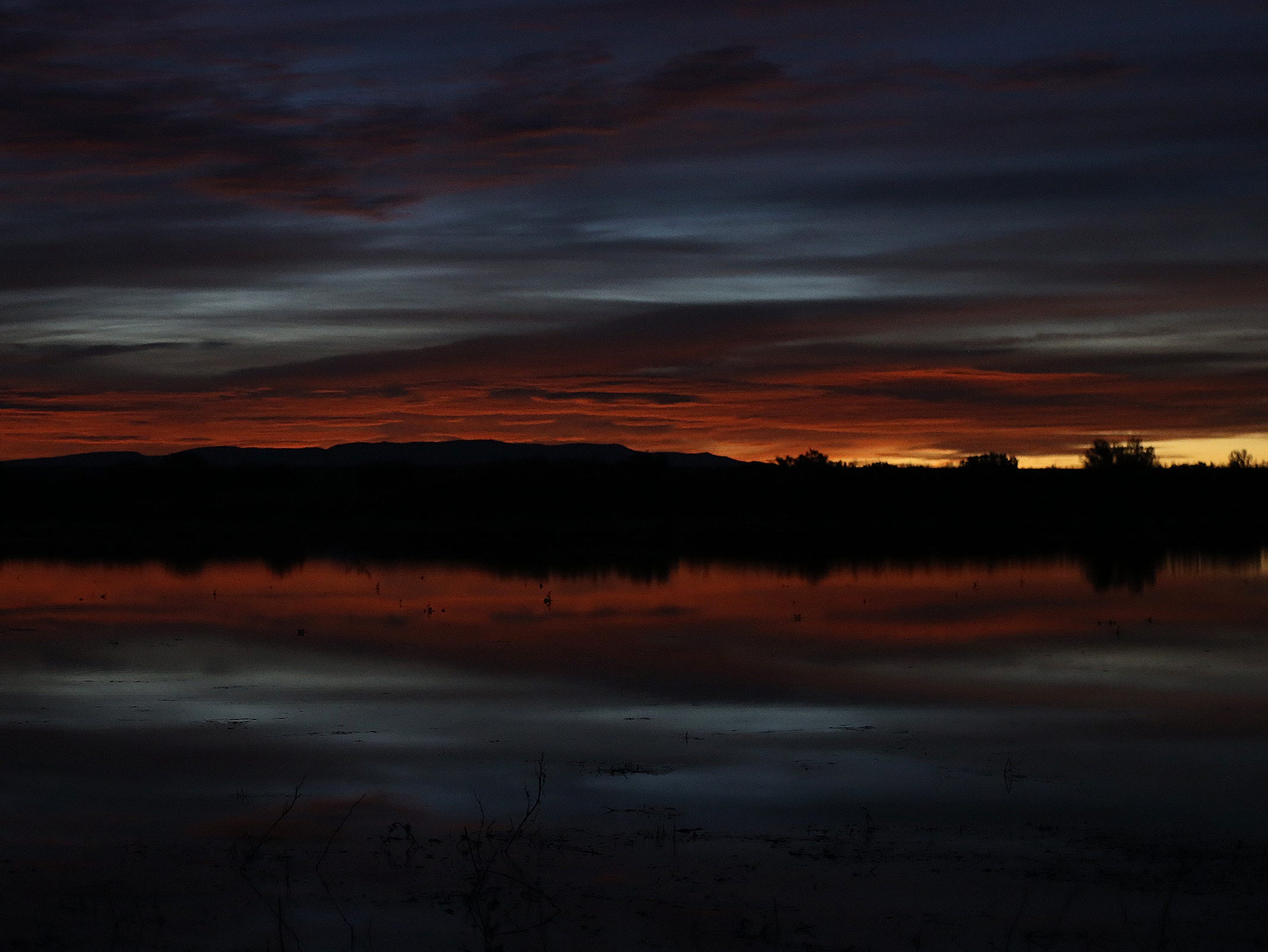 The sun begins to rise at Bosque del Apache National Wildlife Refuge.